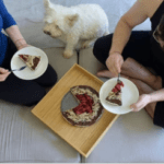 Can dogs eat cheesecakes